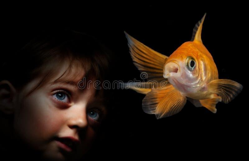 Liten flicka bak akvariet som ser på fisk royaltyfri fotografi
