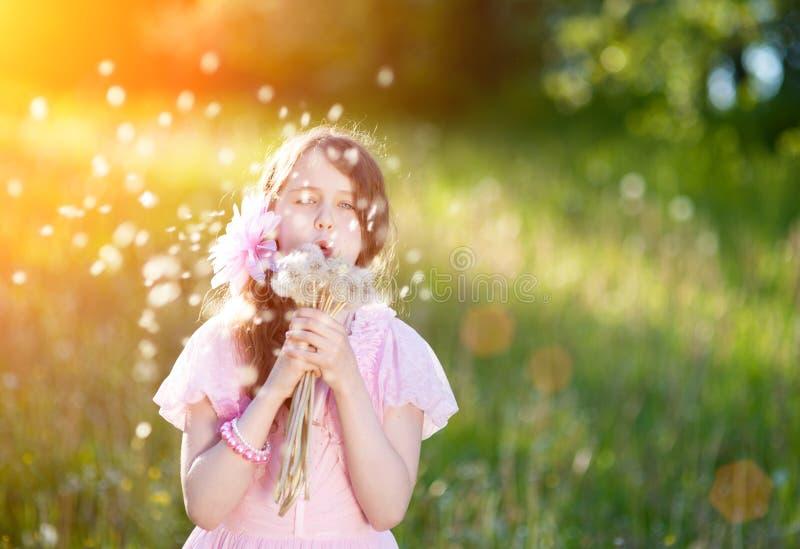 Liten flicka i en rosa klänning som blåser en bukett av maskrosor i strålarna av en ljus sol arkivfoton