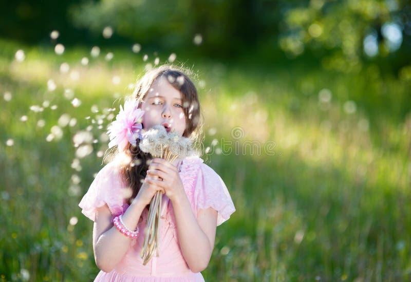 Liten flicka i en rosa klänning som blåser en bukett av maskrosor royaltyfri fotografi