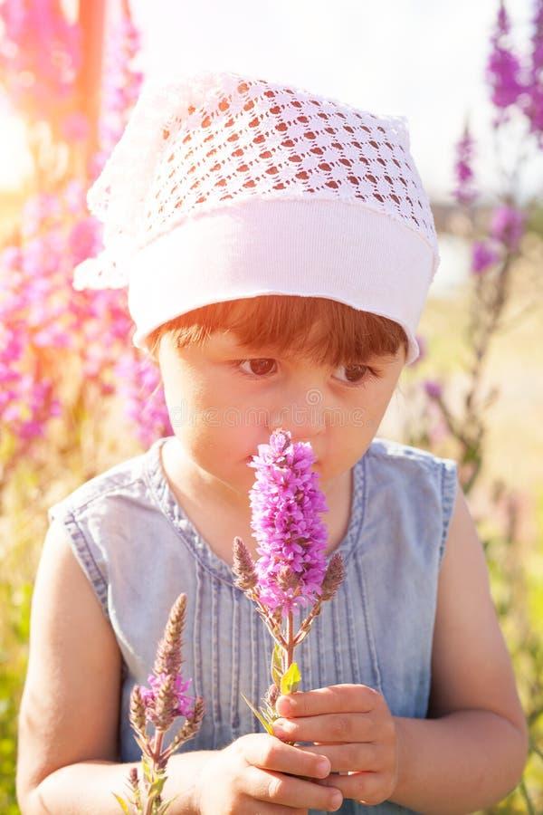 Liten flicka i ett f?lt av blommor arkivfoton