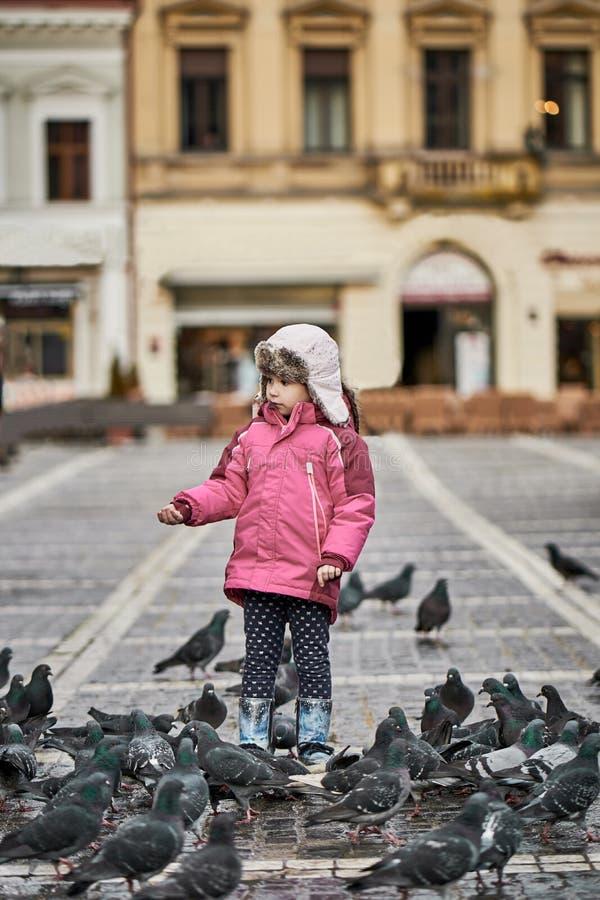 Liten flicka i matande duvor för en stadsfyrkant arkivfoton
