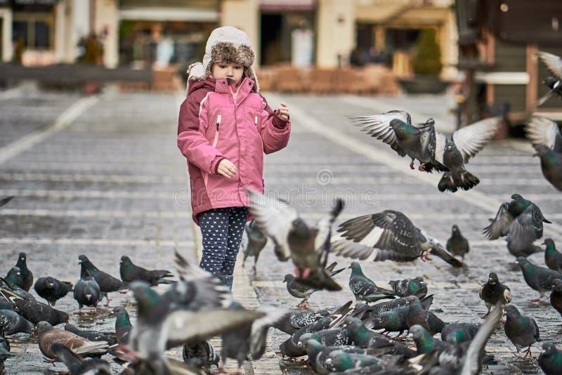 Liten flicka i matande duvor för en stadsfyrkant arkivfoto