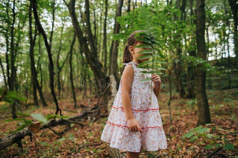 Liten flicka i skogen med ormbunkar royaltyfri bild