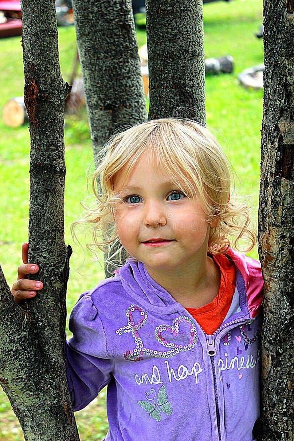 Liten flicka i träden royaltyfri foto