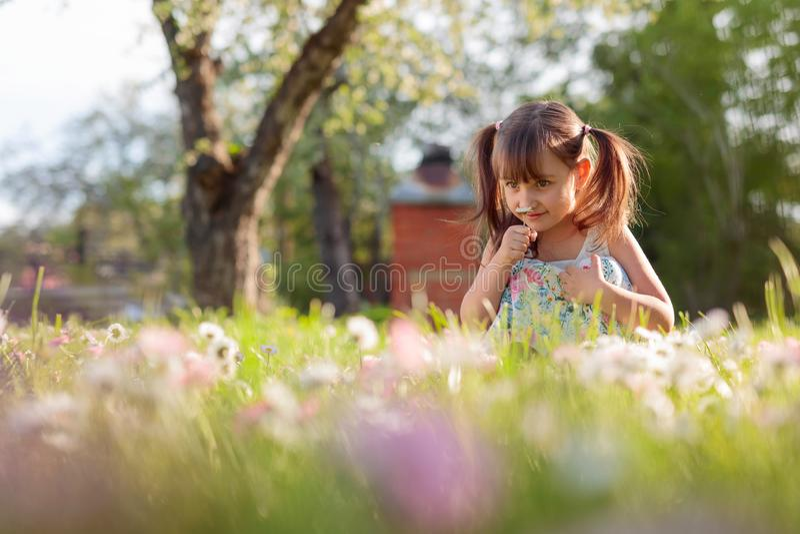 Liten flicka i trädgården med tusenskönor arkivbilder