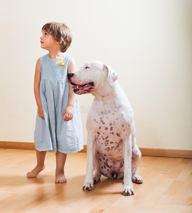 Liten flicka med den stora vita hunden fotografering för bildbyråer