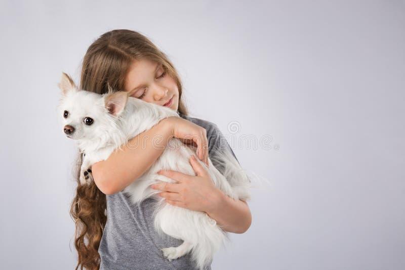 Liten flicka med den vita hunden som isoleras på grå bakgrund Ungar daltar kamratskap royaltyfri fotografi