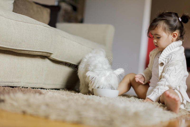 Liten flicka med en hund royaltyfri fotografi