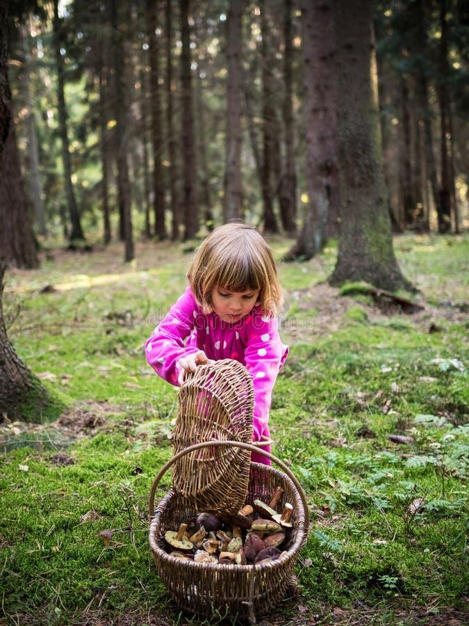 Liten flicka med en korg av champinjoner arkivbild