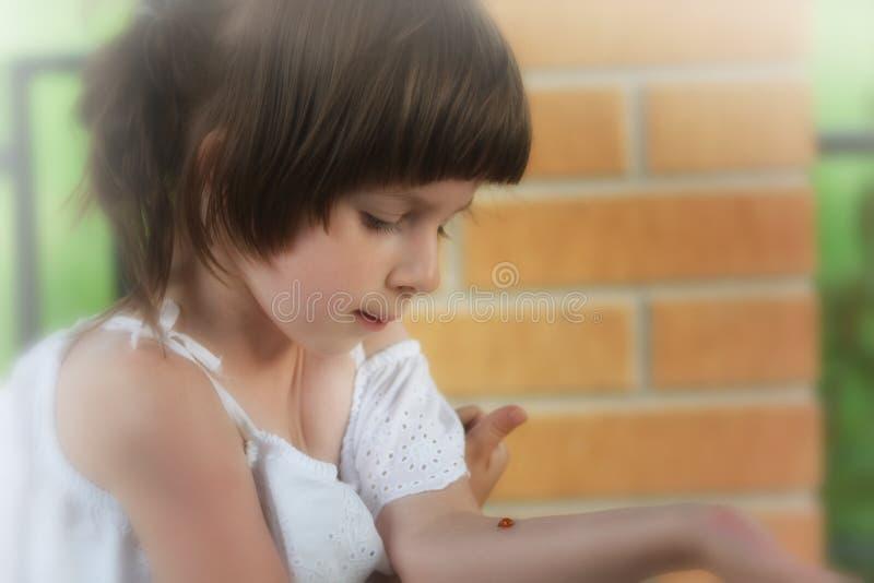Liten flicka med en nyckelpiga på hennes arm fotografering för bildbyråer