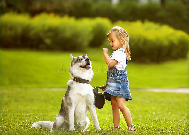 Liten flicka med en skrovlig hund royaltyfri bild