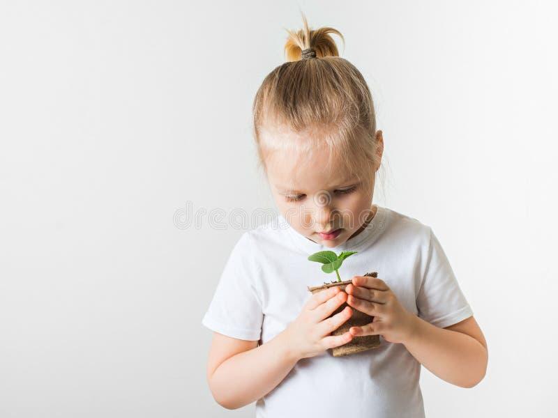 Liten flicka med grodd-, ekologi- och miljötema på vit bakgrund royaltyfri fotografi