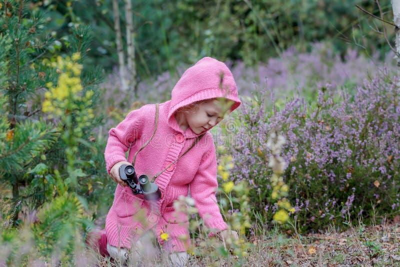 Liten flicka med kikare i hand som studerar miljön i sommarskog arkivfoto