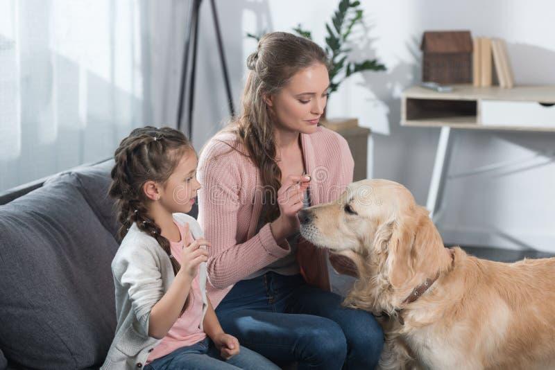 Liten flicka och hennes moder som spelar med golden retriever, medan sitta på soffan arkivfoton