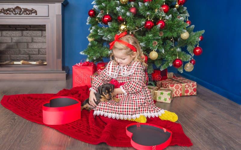 Liten flicka och hund i närvarande ask lycklig liten valp för flicka Vinterferie arkivfoto