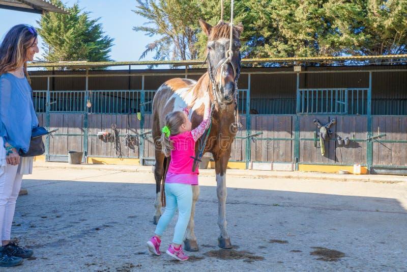 Liten flicka som förutom smeker en häst bredvid hennes stöt för moder royaltyfria bilder