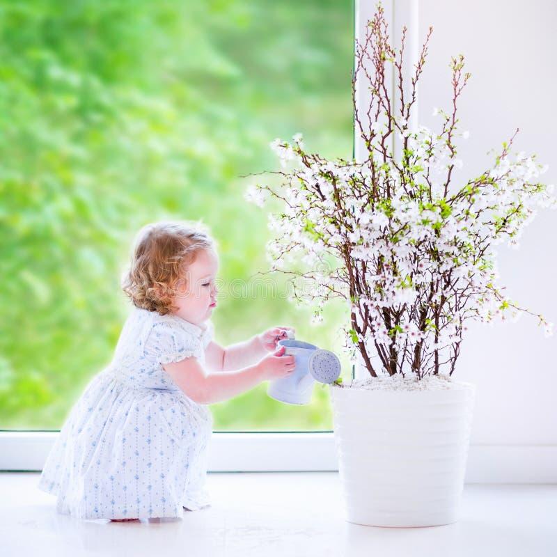 Liten flicka som hemma bevattnar blommor arkivbild