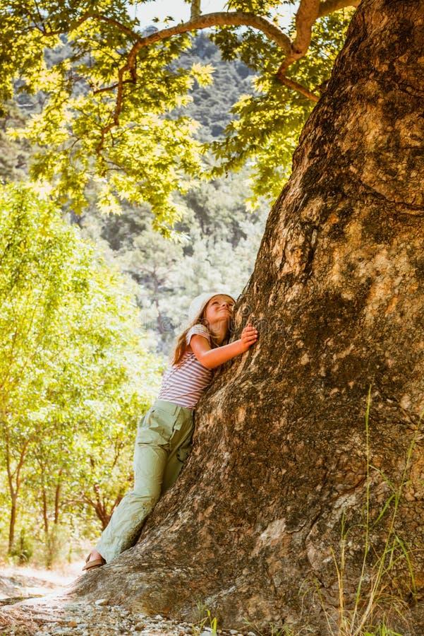 Liten flicka som kramar det stora trädet fotografering för bildbyråer