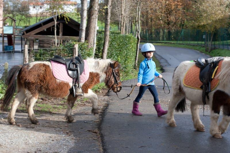 Liten flicka som leder en ponny arkivfoto
