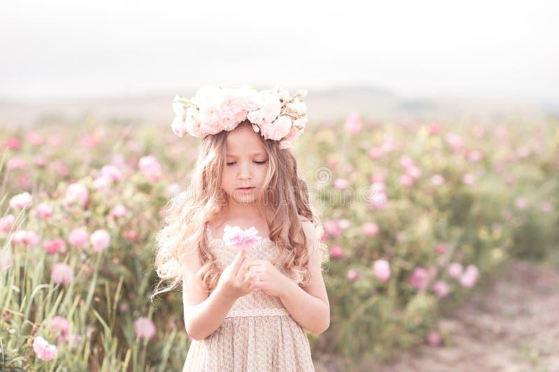 Liten flicka som poserar i rosträdgård royaltyfri fotografi