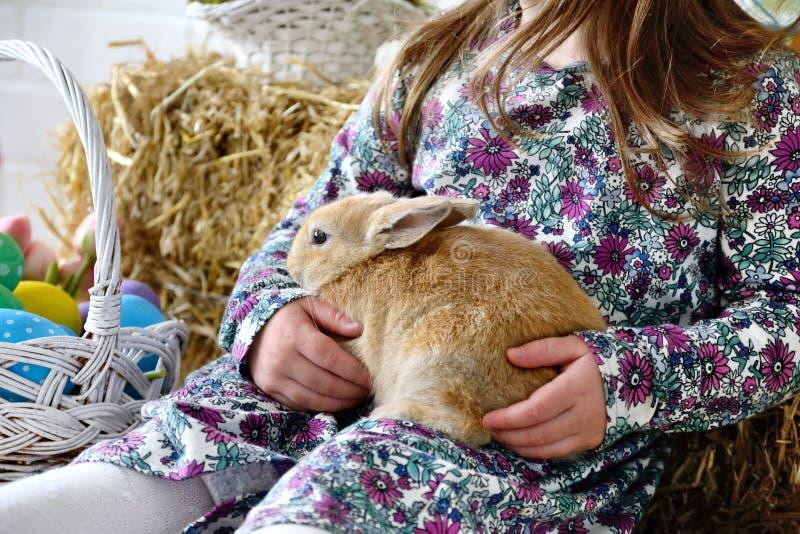 Liten flicka som rymmer en fluffig kanin med påskägg arkivfoton