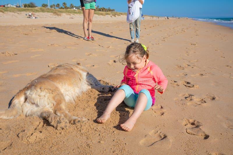 Liten flicka som skrattar sammanträde med en hund på sandstranden arkivbilder