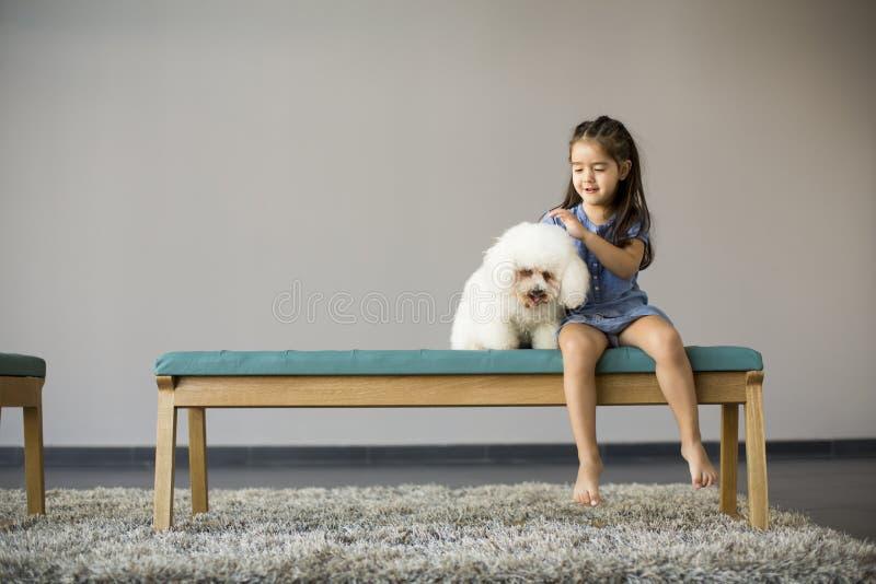Liten flicka som spelar med den vita pudeln fotografering för bildbyråer
