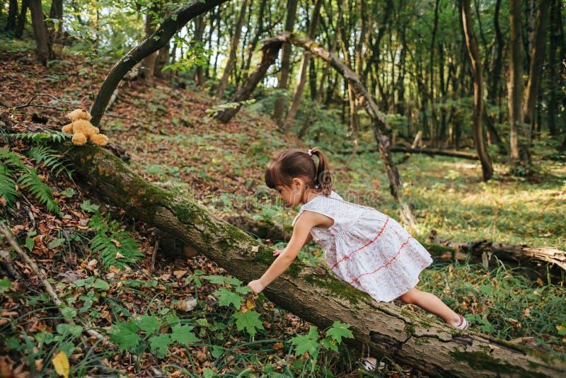 Liten flicka som spelar med hennes björn i skogen royaltyfri bild