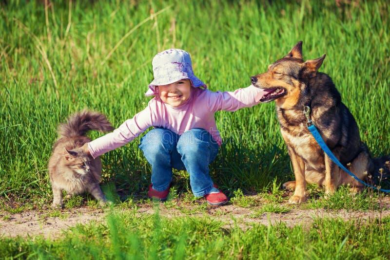 Liten flicka som spelar med hunden och katten royaltyfria bilder