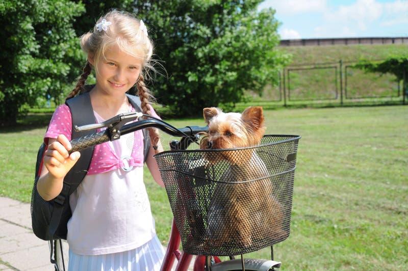 Liten flicka, valp och cykel royaltyfria bilder