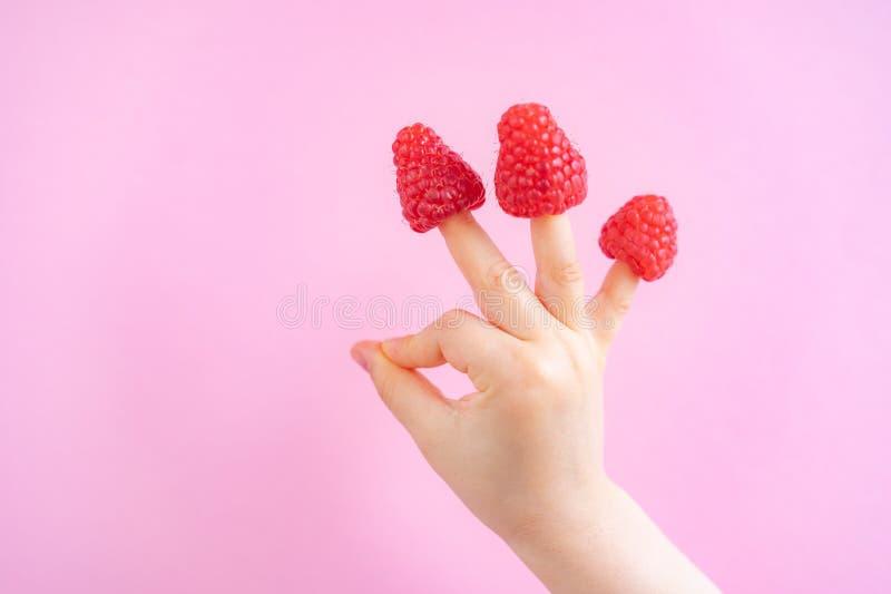 Liten flickah?nder med hallon p? fingrar i rosa bakgrund, kopieringsutrymme royaltyfria bilder