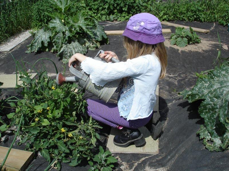 Liten flickaportion i trädgården royaltyfri foto
