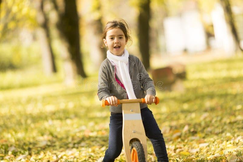 Liten flickaridningcykeln i höst parkerar royaltyfri bild