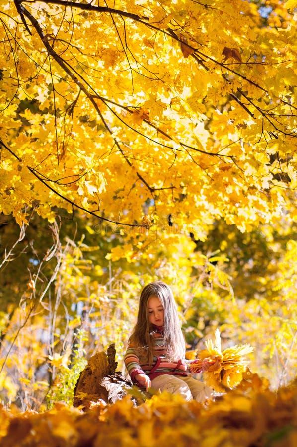 Liten flickasammanträde på en inloggning som hösten parkerar royaltyfri foto