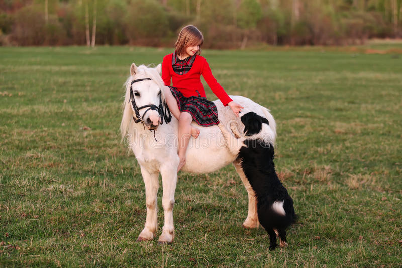 Liten flickasammanträde på en vit häst och gömma i handflatan hunden royaltyfri foto