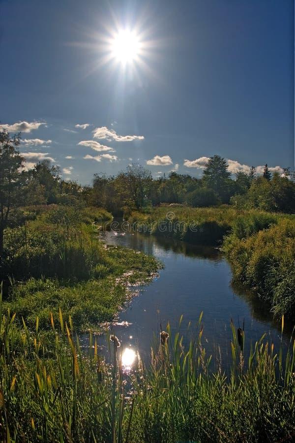 liten flod fotografering för bildbyråer