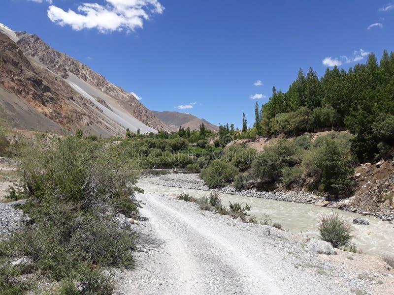 Liten flod för grön skog och härlig sikt royaltyfria foton