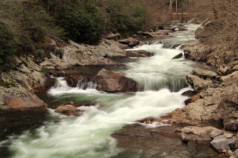 Liten flod i stora Smokey Mountains National Park royaltyfria foton