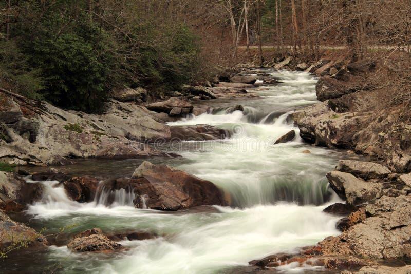 Liten flod i stora Smokey Mountains National Park arkivfoto