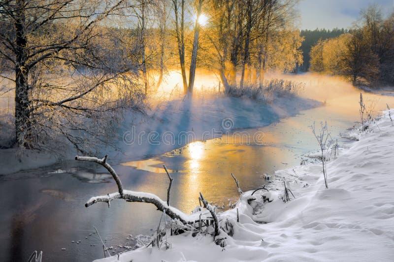 Liten flod i vinter fotografering för bildbyråer