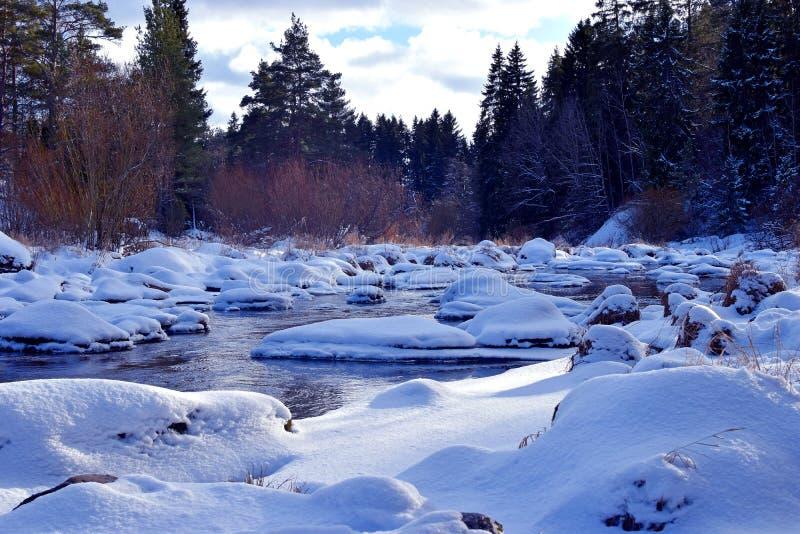 Liten flod i vinterskog royaltyfri bild