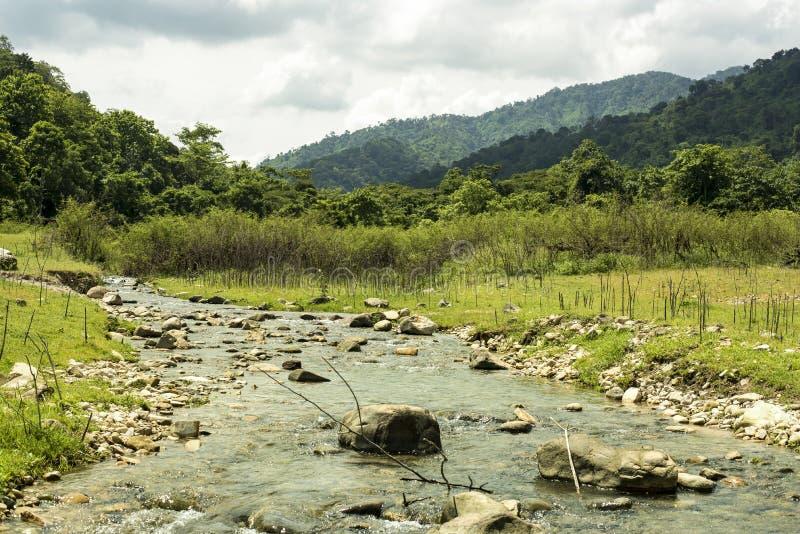 Liten flod med berget royaltyfri fotografi