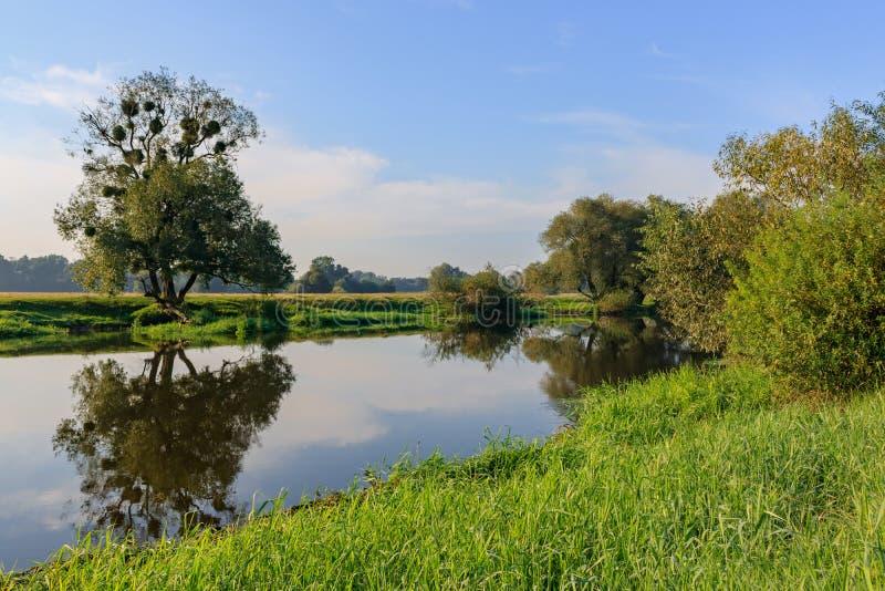Liten flod på bakgrunden av gräs-täckte banker mot blå himmel Flodlandskap på en sommarmorgon royaltyfria foton