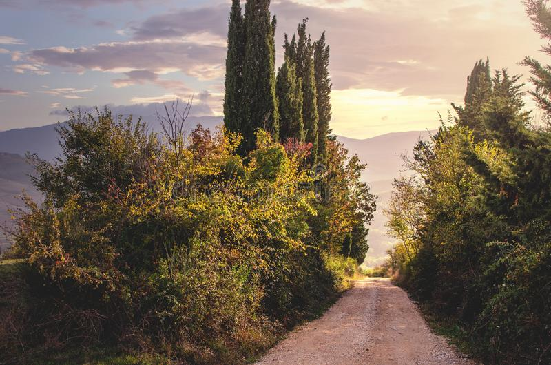Liten gata i aftonen i Tuscany arkivbild