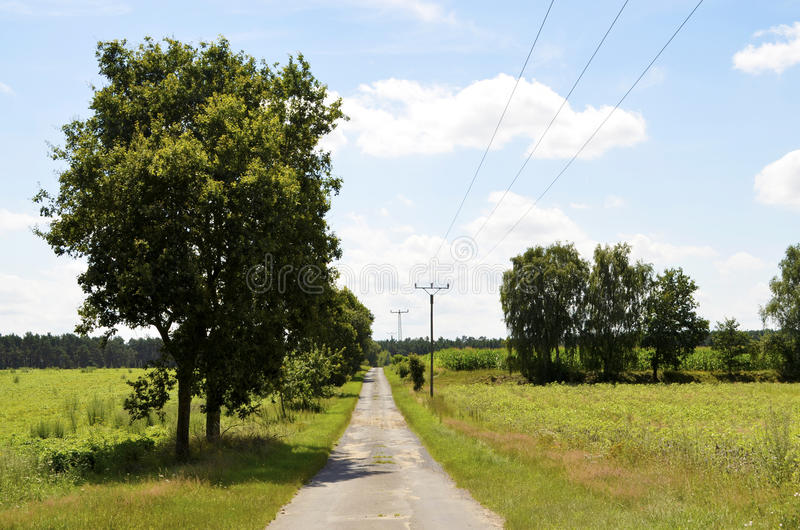 Liten gata mellan ängar och fält i neburgeren Heide för ¼ för Lueneburg hed LÃ arkivbild