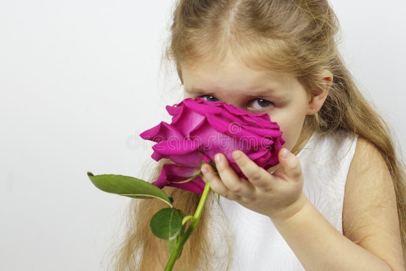 Liten gullig flicka med en rosblomma royaltyfri bild