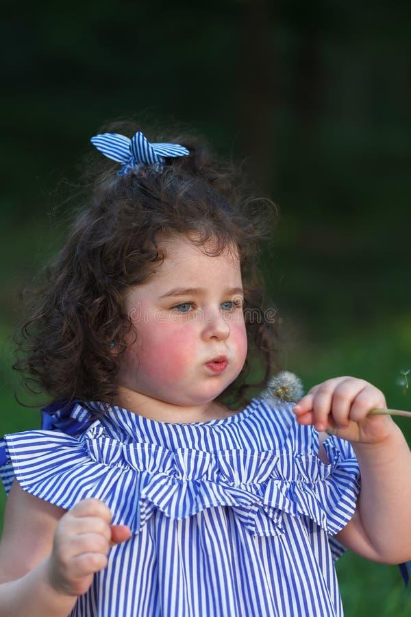 Liten härlig lockig flicka som blåser på en maskros royaltyfri bild