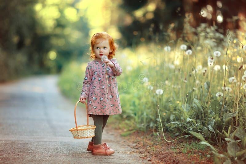 Liten härlig rödhårig liten flicka som blåser på maskrosen, in royaltyfri foto