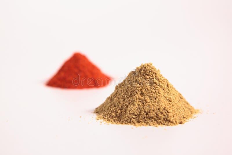 Liten hög av kryddor, korianderpulvret och chilipulver royaltyfri fotografi