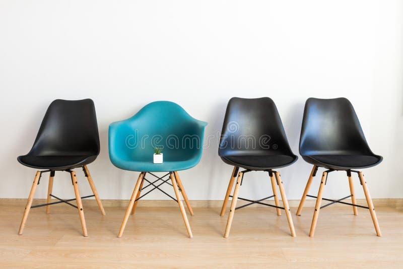 Liten kaktus på en stol i ett tomt rum, ett begrepp arkivfoto